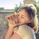 猫の寄生虫は人間に感染する?薬で治療はできるか調べてみた