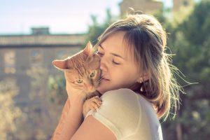猫 寄生虫 人間1