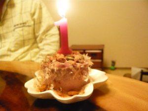 猫 誕生日44