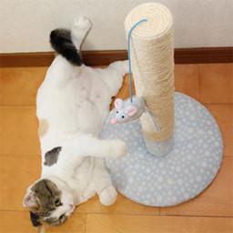 猫 誕生日27
