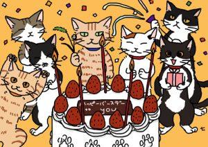 猫 誕生日5