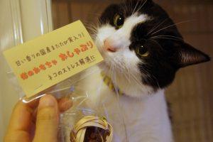 猫 誕生日48