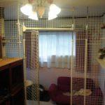 猫と寝る部屋は分けるべき?狭い場合の仕切りの工夫とは?