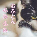 猫の「ふみふみ」や喉の「ゴロゴロ」の気持ちは?