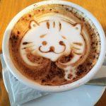 猫がコーヒーを飲んでしまった!対処法やカフェインの影響は?