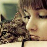 猫のダニは人間にも悪影響?原因と対策についても